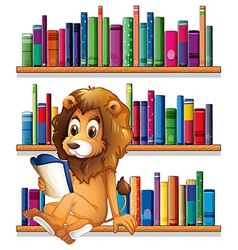 A lion reading book while sitting on bookshelf vector