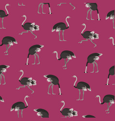 cartoon ostrich bird seamless pattern background vector image