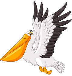 cartoon pelican flying isolated on white backgroun vector image