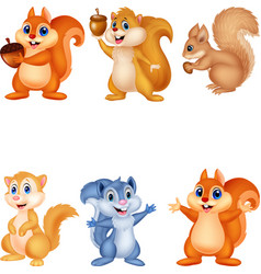 cartoon squirrel collection set vector image
