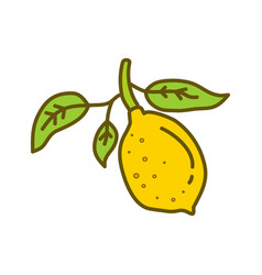 lemon fruit design template flat vector image