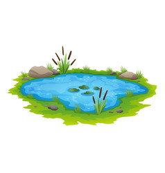 Natural pond outdoor scene small blue decorative vector