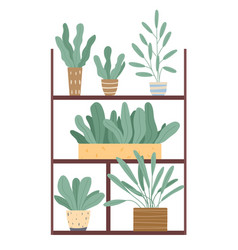 plants growing in pots or planters set green vector image