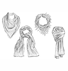 scarves vector image