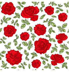 seamless pattern of hand drawn red roses vector image
