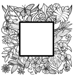 tropical square frame vector image