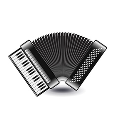 Accordion isolated on white vector image vector image