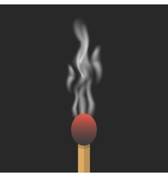 Burned match with smoke vector