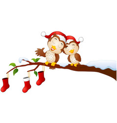 Christmas couple owls on the tree branch with chri vector