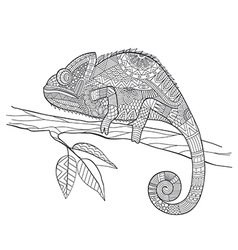 entangle stylized chameleon lizard hand drawn vector image