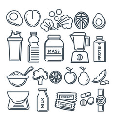 Healthy lifestyle and fitness food nutrition vector