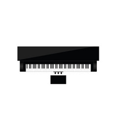 Piano instrument music vector