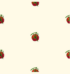 seamless pattern with tomatoes on a white vector image