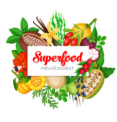 Superfood fruits and beries vector