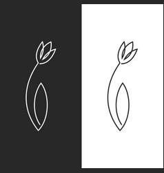 Tulip logo feminine leaf flower emblem for spa vector