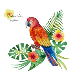 Watercolor parrot flowers and leaves vector