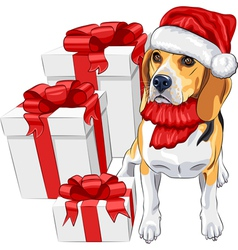 dog Beagle in the red hat of Santa Claus vector image vector image