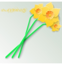Abstract greeting card with 3d yellow daffodils vector image