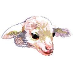 Artistic lamb cartoon vector
