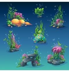 Collection of seaweed underwater vector