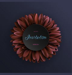 Dark red gerbera flower on dark blue background vector