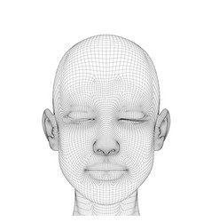 Wireframe of the head of a girl with a calm facial vector