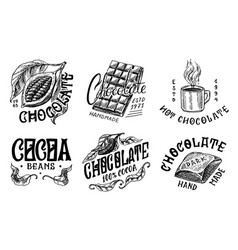 cocoa beans and chocolate bar grains woman and vector image