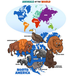 Educational cartoon north american animals vector