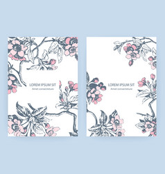 hand drawn sakura pink blossom flowers and leaves vector image