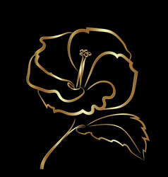 hibiscus flower sketch gold on black vector image