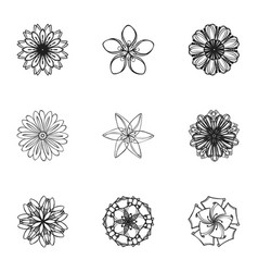 spring flower icon set simple style vector image