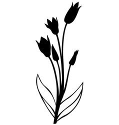 wild tulip silhouette vector image