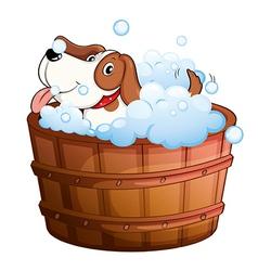 A cute puppy taking a bath vector image vector image