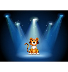 A stage with a tiger vector image vector image