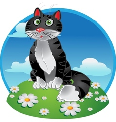 Black funny sitting cat on color background vector image