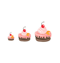 Cakes sizes set fancy cake with a cherry dessert vector