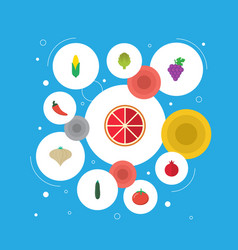 Flat icons salad love apple maize and other vector