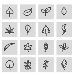 line leaf icons set vector image