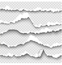 set of torn paper on transparent background vector image