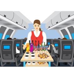 Stewardess in salon of the plane vector image