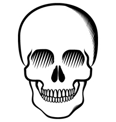 skull black on transparent vector image vector image
