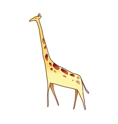 A giraiffe is standing vector