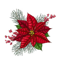 Christmas decoration with red poinsettia vector