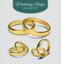 Gold wedding rings isolated on trasparent vector