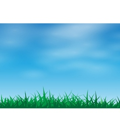 Green grass in a blue sky vector