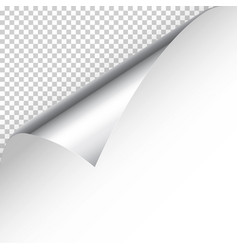 Realistic silver curled page corner with shadow on vector