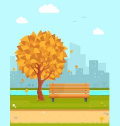 autumn park vector image