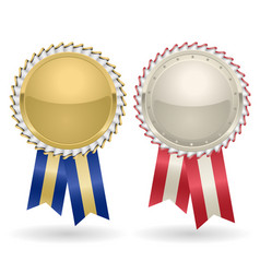 award rosette gold and silver vector image