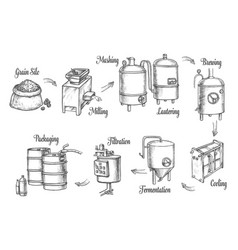 beer brewery production infographics sketch icons vector image