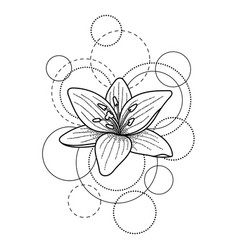 Tattoo with lily and circles on white background vector